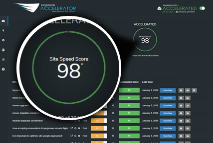 Pegasaas Accelerator Showing Accelerated Google PageSpeed Score