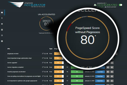 Pegasaas Accelerator Showing Google PageSpeed Score Before Acceleration